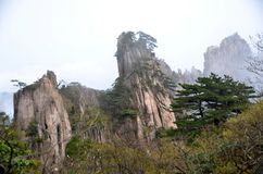 Huangshanbergen Stock Fotografie