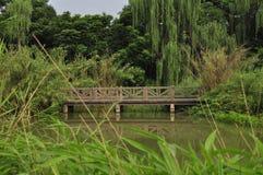 HUANHUAXI PARK,chengdu china. CHENGDU CHINA HUAN HUA XI PARK stock images