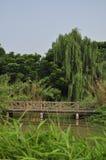 HUANHUAXI PARK,chengdu china. CHENGDU CHINA HUAN HUA XI PARK royalty free stock image