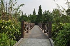 HUANHUAXI PARKï ¼ Œchengdu China Stock Afbeelding