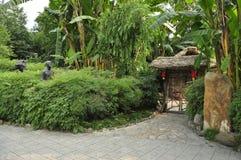 HUANHUAXI PARKï ¼ Œchengdu China Royalty-vrije Stock Foto's
