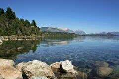 huapi jeziora nahuel Zdjęcia Royalty Free