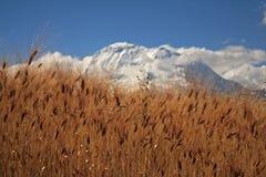 Huascaran royalty-vrije stock afbeelding