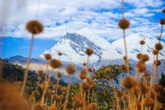 HUASCARAN góra W HUARAZ, PERU zdjęcia stock