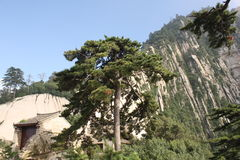 Huashan Mountain in China Royalty Free Stock Images