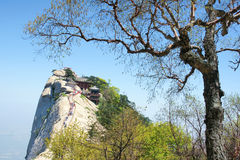 Huashan scenery Royalty Free Stock Photos
