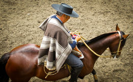 Huaso, Chilean Rodeo, Claiming Ribbon Royalty Free Stock Photography