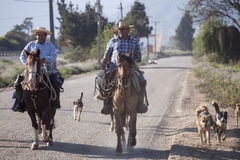 Huasos on his Horses. Chile Stock Image