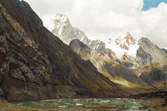 huayhuash秘鲁牛拉车旅行 库存图片