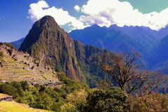 Huayna Picchu και τα απόμακρα ντυμένα βουνά δέντρων που αντιμετωπίζονται από Machu Picchu Στοκ εικόνες με δικαίωμα ελεύθερης χρήσης