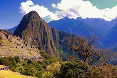 Huayna Picchu und die plattierten Berge des entfernten Baums angesehen von Machu Picchu Lizenzfreie Stockbilder