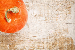 Hubbard winter squash on wood Stock Photo