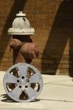 Hubcap & hydrant Zdjęcie Royalty Free