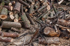 Hubei Yiling Three Gorges of the Yangtze River Dengying Gorge people firewood Stock Photo