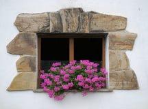 Hublot avec des fleurs Image libre de droits