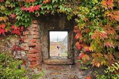 Hublot avec le lierre dans le mur de forteresse Images libres de droits