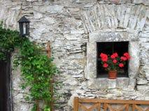 Hublot avec les fleurs rouges Images stock
