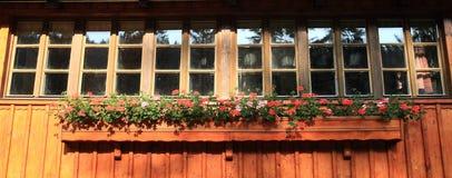 Hublot avec les fleurs rouges Photo stock