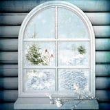 Hublot de l'hiver Image libre de droits