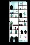 Hublot de système de bijou Photographie stock libre de droits