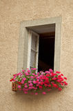 Hublot et fleurs image stock