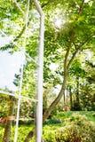 Hublot ouvert de jardin d'été photo stock