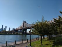 Hubschrauber über Queensboro Bridge, Roosevelt Island, NYC, NY, USA Stockbilder