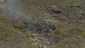 Hubschrauber und Bäume stock video footage