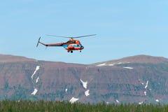 Hubschrauberflugwesen über dem Wald stockbild