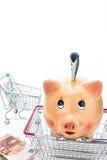 Hucha con el dinero y el carro de la compra Imagen de archivo libre de regalías