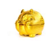 Hucha de oro china del cerdo imagen de archivo libre de regalías