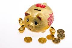 Hucha de oro del cerdo Foto de archivo libre de regalías