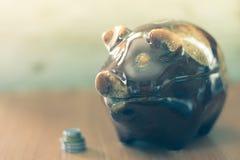 Hucha del cerdo con las monedas Foto de archivo libre de regalías