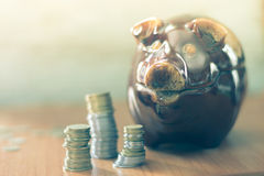 Hucha del cerdo con las monedas Fotos de archivo