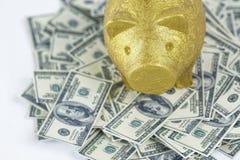 Hucha en la pila de 100 notas del dólar Foto de archivo libre de regalías