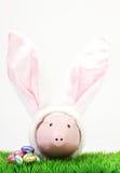 Hucha rosada con los oídos de conejos y los huevos de Pascua blancos del chocolate en prado en el fondo blanco Fotografía de archivo
