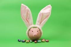 Hucha rosada con los oídos de conejos y los huevos de Pascua blancos del chocolate en fondo verde Fotos de archivo libres de regalías