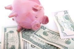 Hucha rosada en dólares Fotografía de archivo