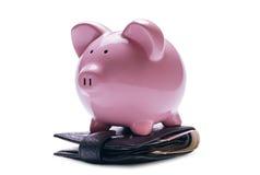 Hucha rosada en una cartera con los billetes de banco Fotografía de archivo libre de regalías