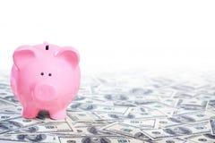 Hucha rosada que se coloca en el campo de dólares Imagen de archivo libre de regalías