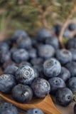 huckleberry Стоковые Фото