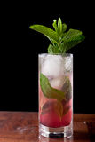 Huckleberry mojito Royalty Free Stock Image