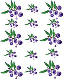 Huckleberry pattern 2 Royalty Free Stock Photo