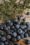 Huckleberry. Strewn on the table Royalty Free Stock Photos
