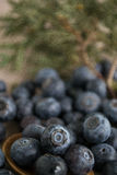 Huckleberry. Strewn on the table stock images