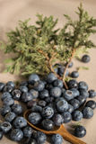 Huckleberry. Strewn on the table royalty free stock image
