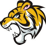 huczenie barwiony tygrys Zdjęcia Royalty Free