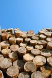 Huddle of wood Royalty Free Stock Image