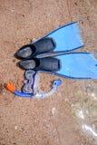 Huddykningkugghjul som ligger på en strand Arkivfoto