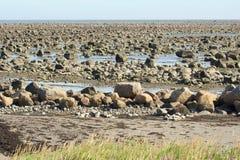 Hudson Bay Low Tide Stone Desert Stock Image